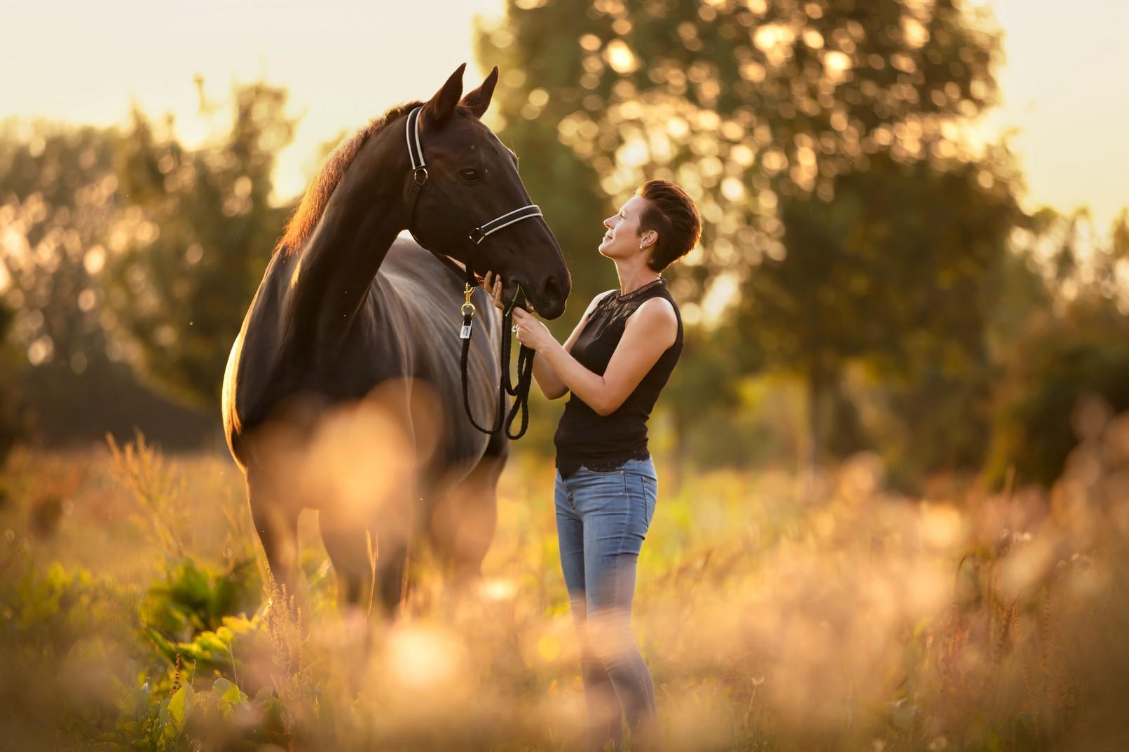 Marieke Kersten Life Coaching paard als spiegel